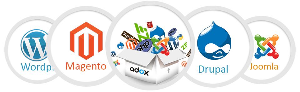 Web Design Company In Chennai Mayflower United Solutions
